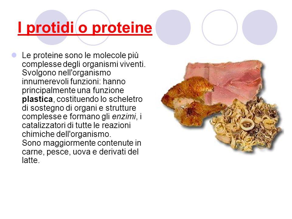 I protidi o proteine Le proteine sono le molecole più complesse degli organismi viventi. Svolgono nell'organismo innumerevoli funzioni: hanno principa