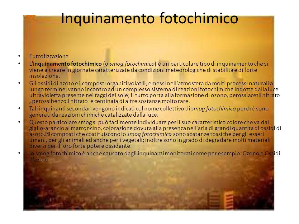 Inquinamento fotochimico Eutrofizzazione L'inquinamento fotochimico (o smog fotochimico) è un particolare tipo di inquinamento che si viene a creare i