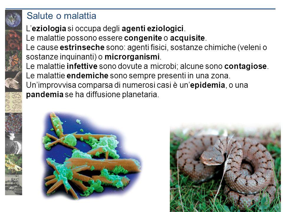 Leziologia si occupa degli agenti eziologici. Le malattie possono essere congenite o acquisite. Le cause estrinseche sono: agenti fisici, sostanze chi
