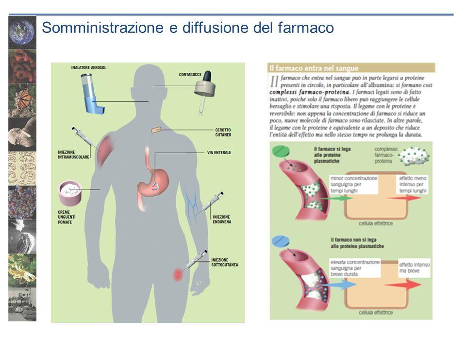 Somministrazione e diffusione del farmaco