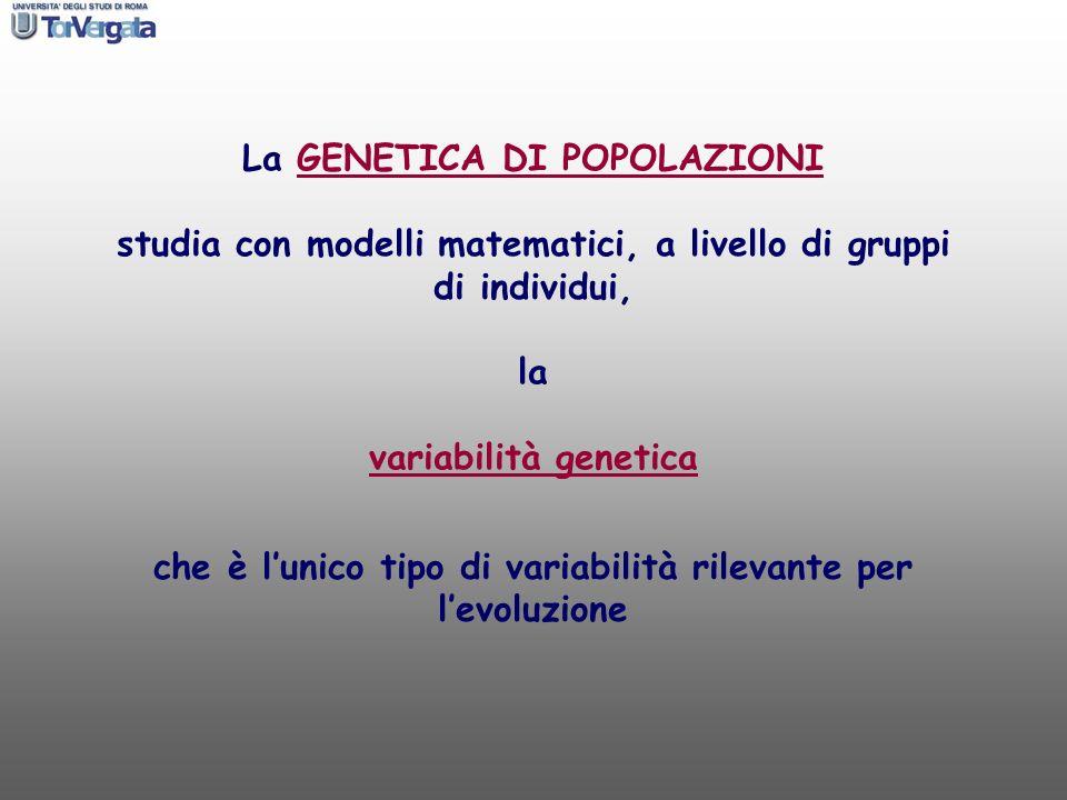 La GENETICA DI POPOLAZIONI studia con modelli matematici, a livello di gruppi di individui, la variabilità genetica che è lunico tipo di variabilità r