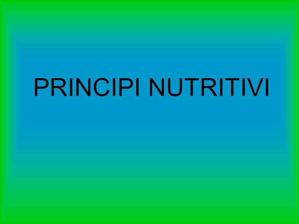 COSA SONO I PRINCIPI NUTRITIVI .