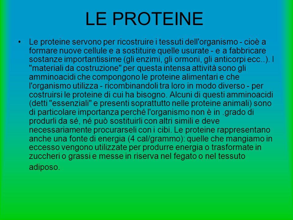 Le proteine servono per ricostruire i tessuti dell'organismo - cioè a formare nuove cellule e a sostituire quelle usurate - e a fabbricare sostanze im