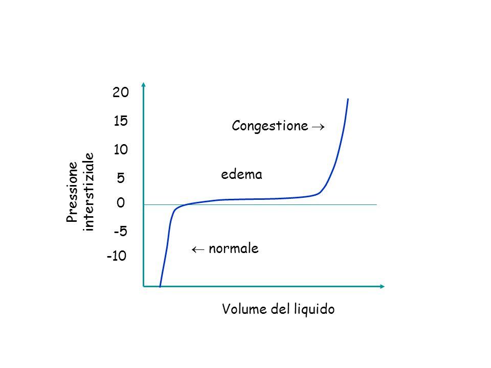 0 -5 -10 5 10 15 20 Pressione interstiziale Volume del liquido normale edema Congestione