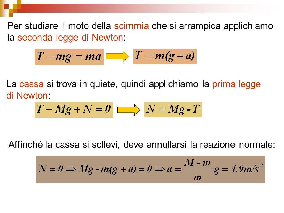 Per studiare il moto della scimmia che si arrampica applichiamo la seconda legge di Newton: La cassa si trova in quiete, quindi applichiamo la prima l