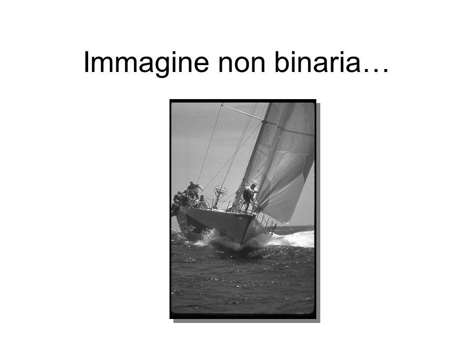 Immagine non binaria…