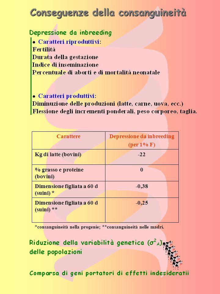 Dovute a geni recessivi: Mantello pezzato rosso Mulefoot (sindattilismo o piede di mulo) BLAD (Bovine Leukocyte Adhesion Deficiency) IDROPISIA (grande accumulo di fluido nelle cavità del corpo e nel tessuto sottocutaneo gonfiore) Razza Frisona