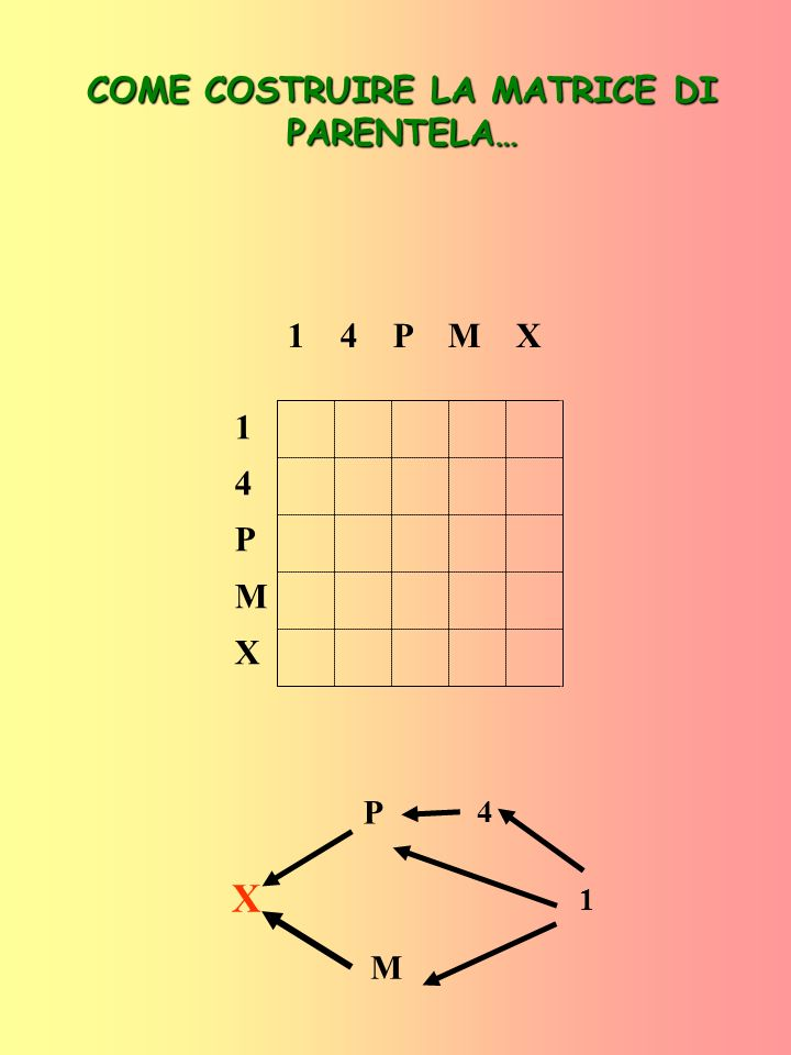 14PMX14PMX -- 1 14 1 PM 1 4 P M X COME COSTRUIRE LA MATRICE DI PARENTELA… X P M 1 4