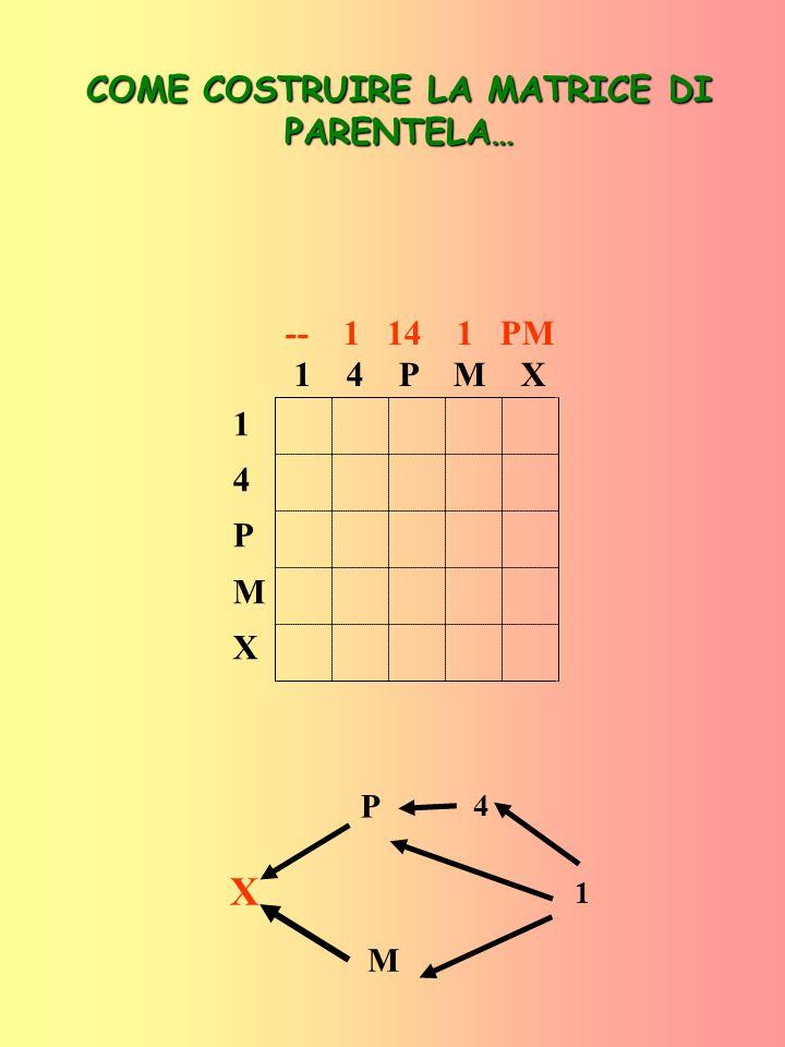 14PMX14PMX -- 1 14 1 PM 1 4 P M X 1 1 1 1 1 COME COSTRUIRE LA MATRICE DI PARENTELA… X P M 1 4
