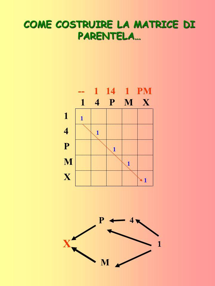 14PMX14PMX -- 1 14 1 PM 1 4 P M X 1+0 1 1 1 1 COME COSTRUIRE LA MATRICE DI PARENTELA… X P M 1 4