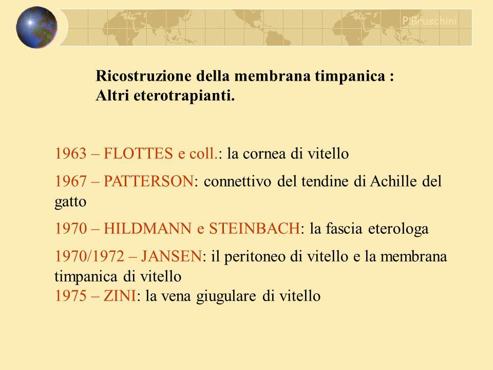 Ricostruzione della membrana timpanica : Altri eterotrapianti. 1963 – FLOTTES e coll.: la cornea di vitello 1967 – PATTERSON: connettivo del tendine d