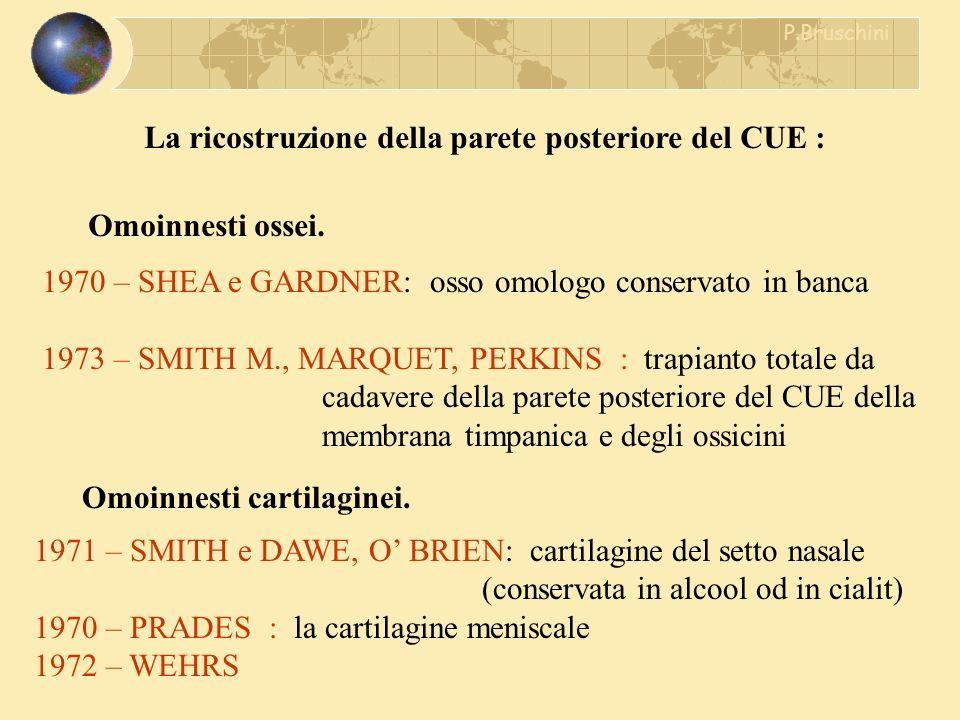 Omoinnesti cartilaginei. 1971 – SMITH e DAWE, O BRIEN: cartilagine del setto nasale (conservata in alcool od in cialit) 1970 – PRADES : la cartilagine