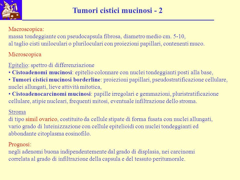 Tumori cistici mucinosi - 2 Macroscopica: massa tondeggiante con pseudocapsula fibrosa, diametro medio cm. 5-10, al taglio cisti uniloculari o plurilo