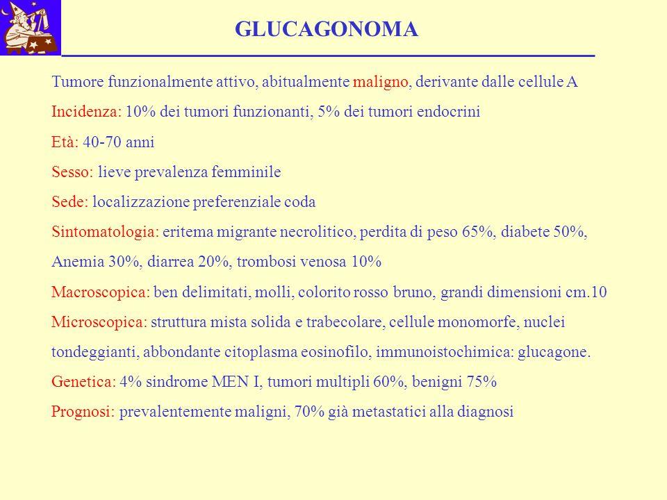 GLUCAGONOMA Tumore funzionalmente attivo, abitualmente maligno, derivante dalle cellule A Incidenza: 10% dei tumori funzionanti, 5% dei tumori endocri