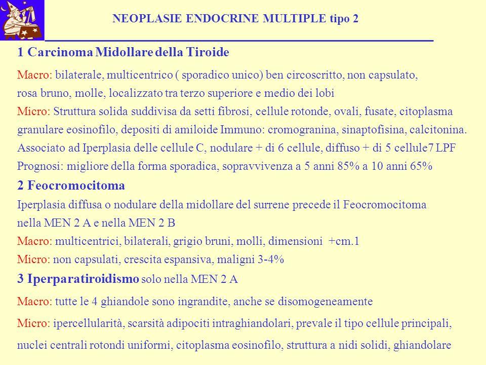 NEOPLASIE ENDOCRINE MULTIPLE tipo 2 1 Carcinoma Midollare della Tiroide Macro: bilaterale, multicentrico ( sporadico unico) ben circoscritto, non capsulato, rosa bruno, molle, localizzato tra terzo superiore e medio dei lobi Micro: Struttura solida suddivisa da setti fibrosi, cellule rotonde, ovali, fusate, citoplasma granulare eosinofilo, depositi di amiloide Immuno: cromogranina, sinaptofisina, calcitonina.