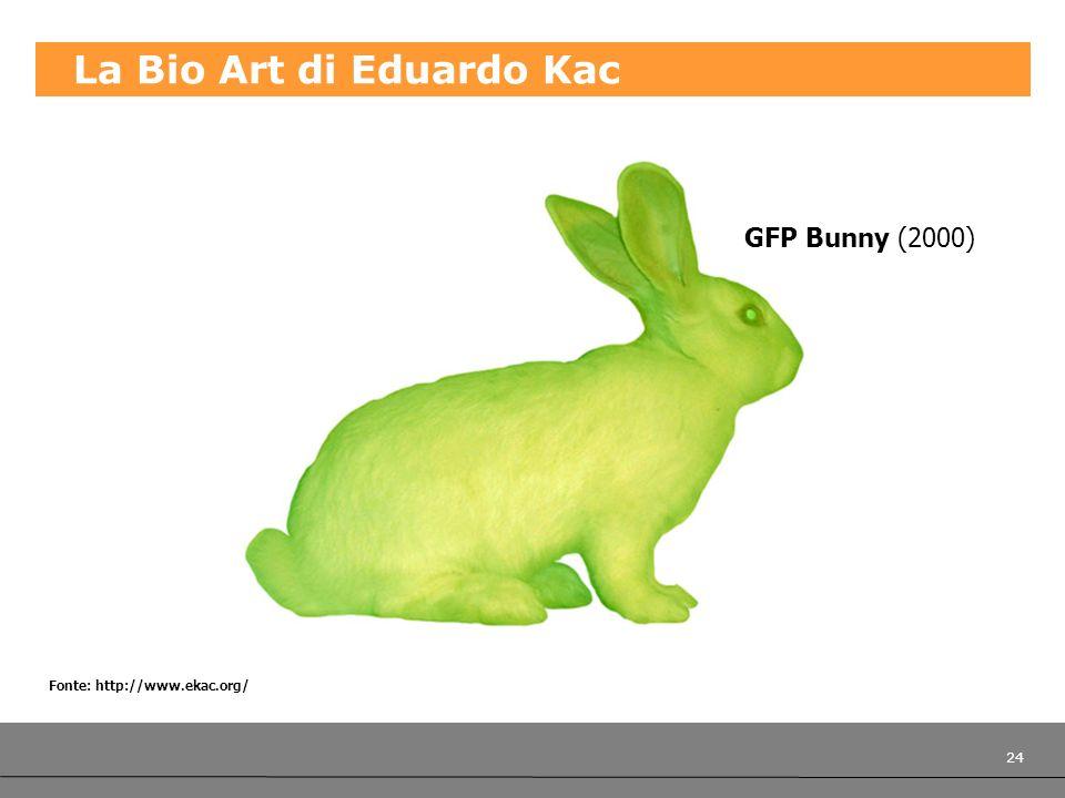 24 La Bio Art di Eduardo Kac GFP Bunny (2000) Fonte: http://www.ekac.org/