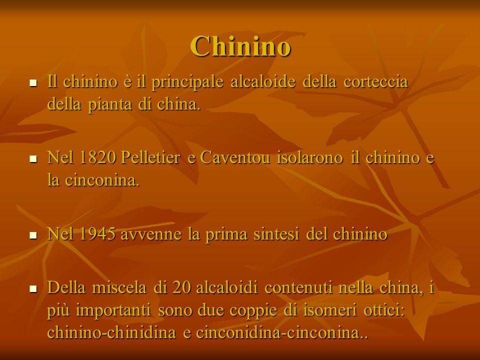 Chinino Il chinino è il principale alcaloide della corteccia della pianta di china. Il chinino è il principale alcaloide della corteccia della pianta
