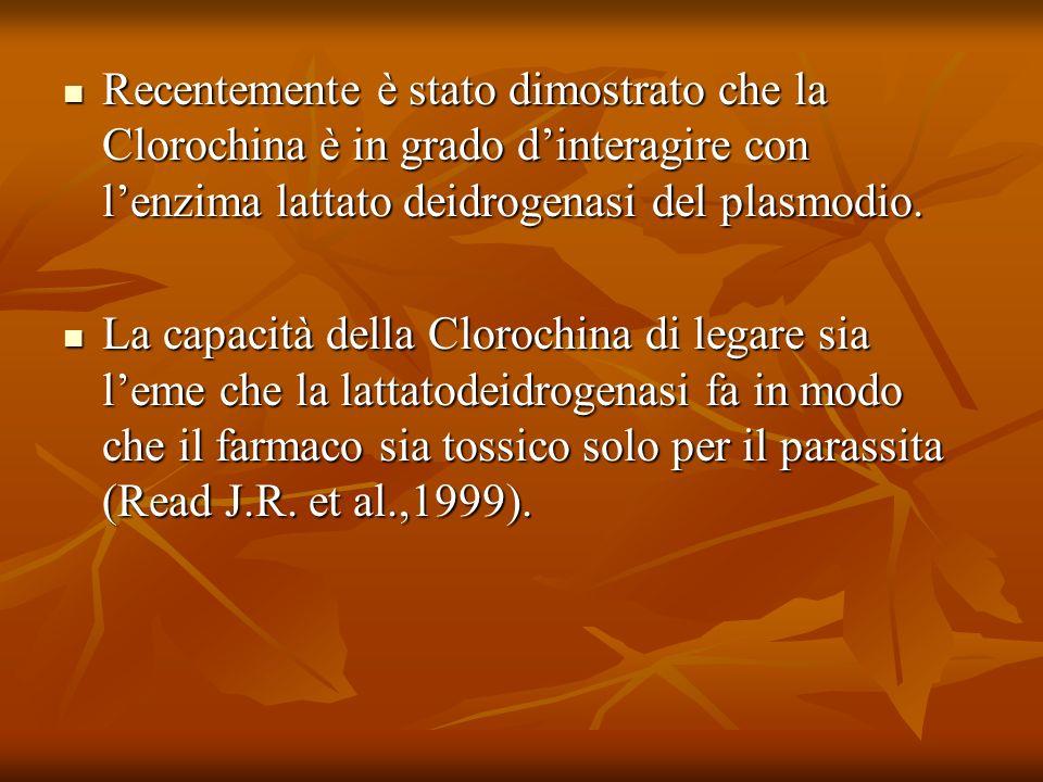 Recentemente è stato dimostrato che la Clorochina è in grado dinteragire con lenzima lattato deidrogenasi del plasmodio. Recentemente è stato dimostra