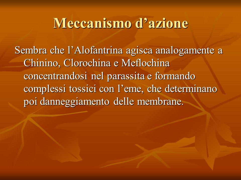 Meccanismo dazione Sembra che lAlofantrina agisca analogamente a Chinino, Clorochina e Meflochina concentrandosi nel parassita e formando complessi to