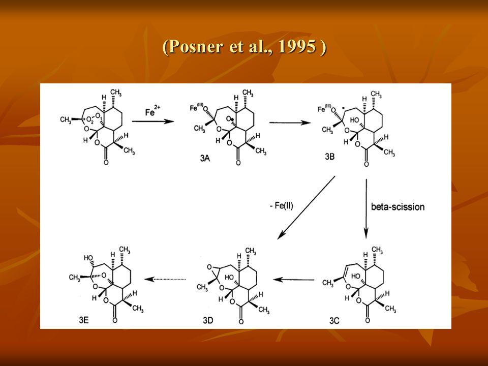 (Posner et al., 1995 )