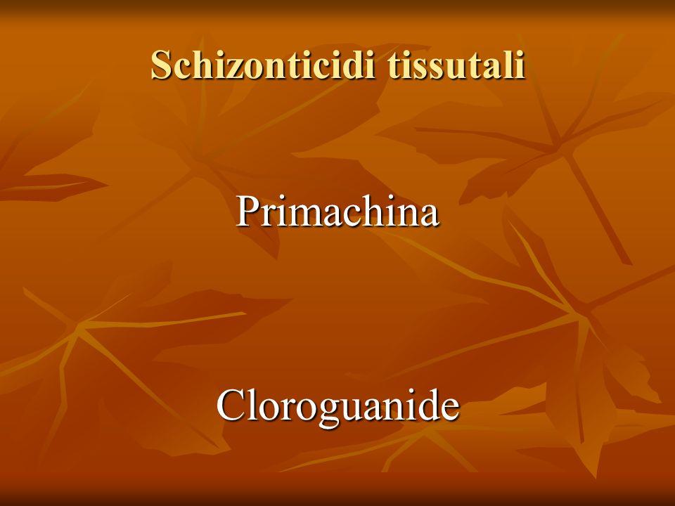 Schizonticidi tissutali PrimachinaCloroguanide