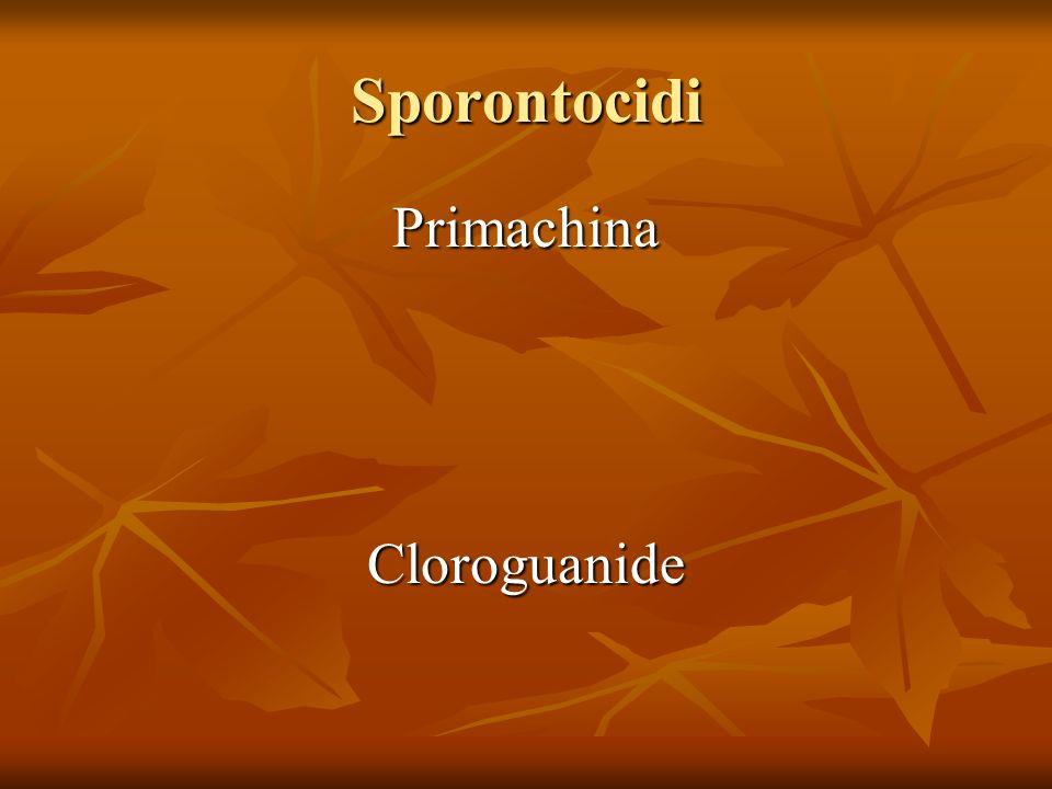 Sporontocidi PrimachinaCloroguanide