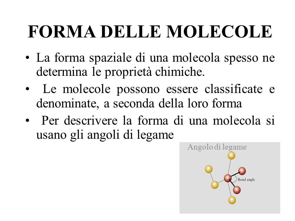 FORMA DELLE MOLECOLE La forma spaziale di una molecola spesso ne determina le proprietà chimiche. Le molecole possono essere classificate e denominate