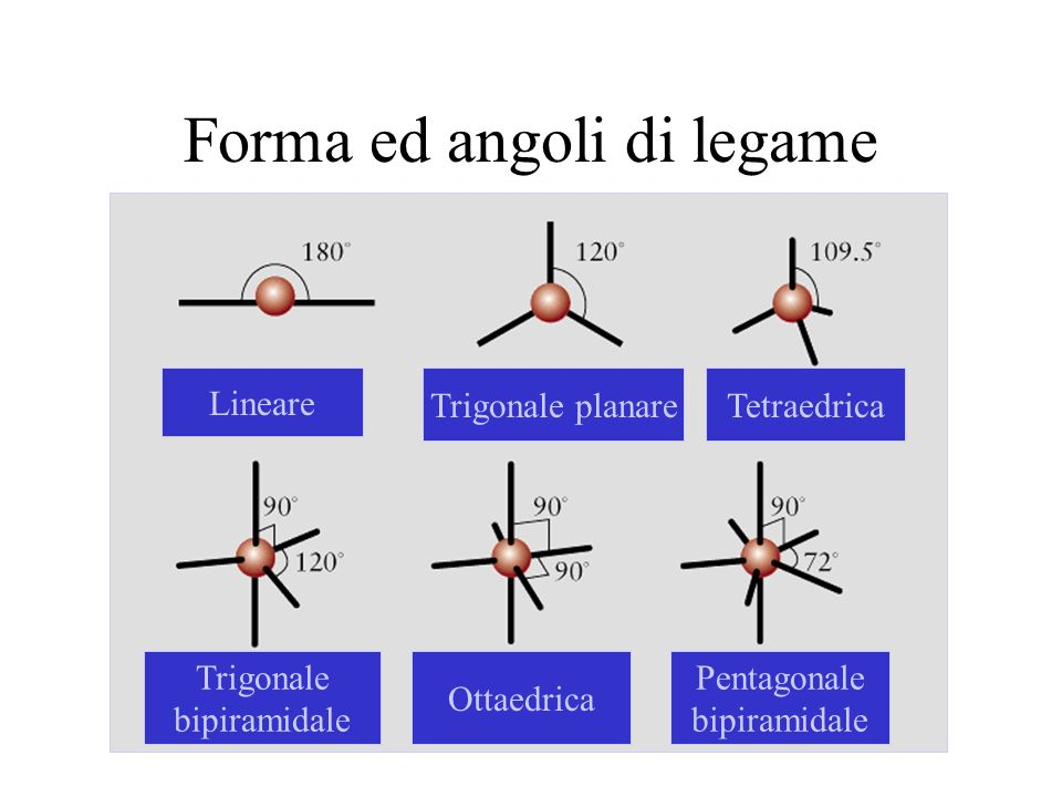 Forma ed angoli di legame Lineare Trigonale planareTetraedrica Trigonale bipiramidale Ottaedrica Pentagonale bipiramidale
