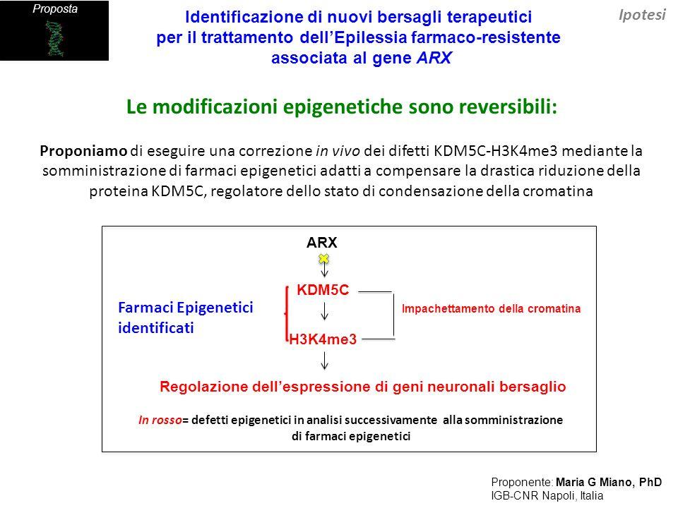 Proposta Obiettivi/ Punti specifici Somministrazione di farmaci epigenetici Già testati per essere capaci di correggere i difetti in vitro.