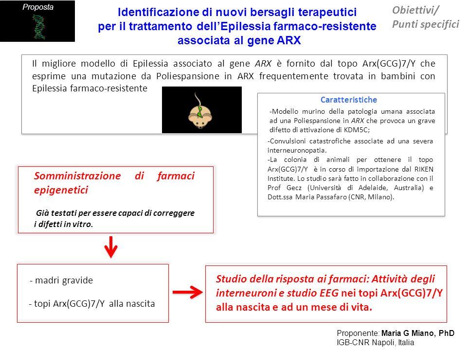 Gene disease Card Proposta Risultati attesi Arx(GCG)7/Y mouse Proponente: Maria G Miano, PhD IGB-CNR Napoli, Italia Nuovi farmaci epigenetici adatti a correggere o migliorare lattività neuronale o mitigare le convulsioni nel modello murino di Epilessia umana associata al gene ARX A partire dai dati già prodotti - Selezione di farmaci che correggono il difetto di espressione e di funzione del regolatore cromatinico KDM5C Identificazione di nuovi bersagli terapeutici per il trattamento dellEpilessia farmaco-resistente associata al gene ARX