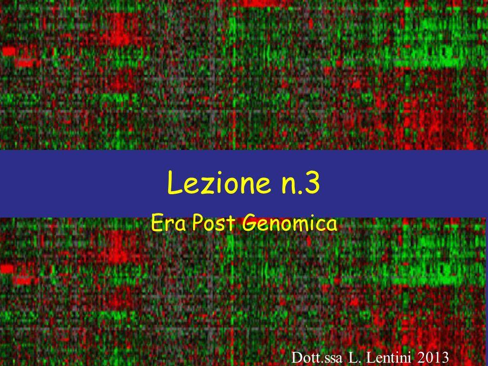 Lezione n.3 Era Post Genomica Dott.ssa L. Lentini 2013
