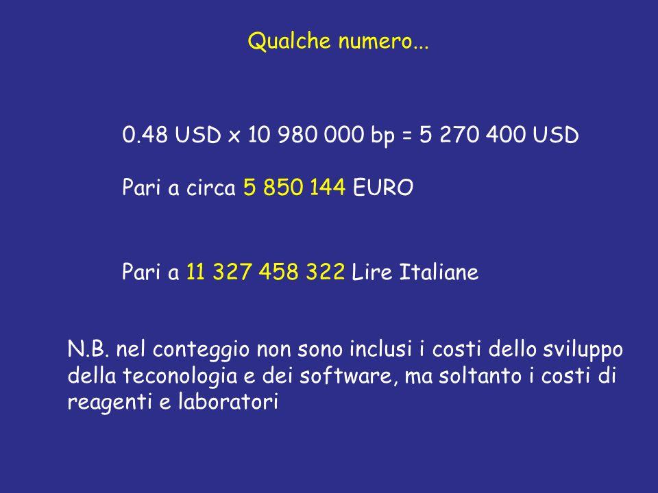 Qualche numero... 0.48 USD x 10 980 000 bp = 5 270 400 USD Pari a circa 5 850 144 EURO Pari a 11 327 458 322 Lire Italiane N.B. nel conteggio non sono