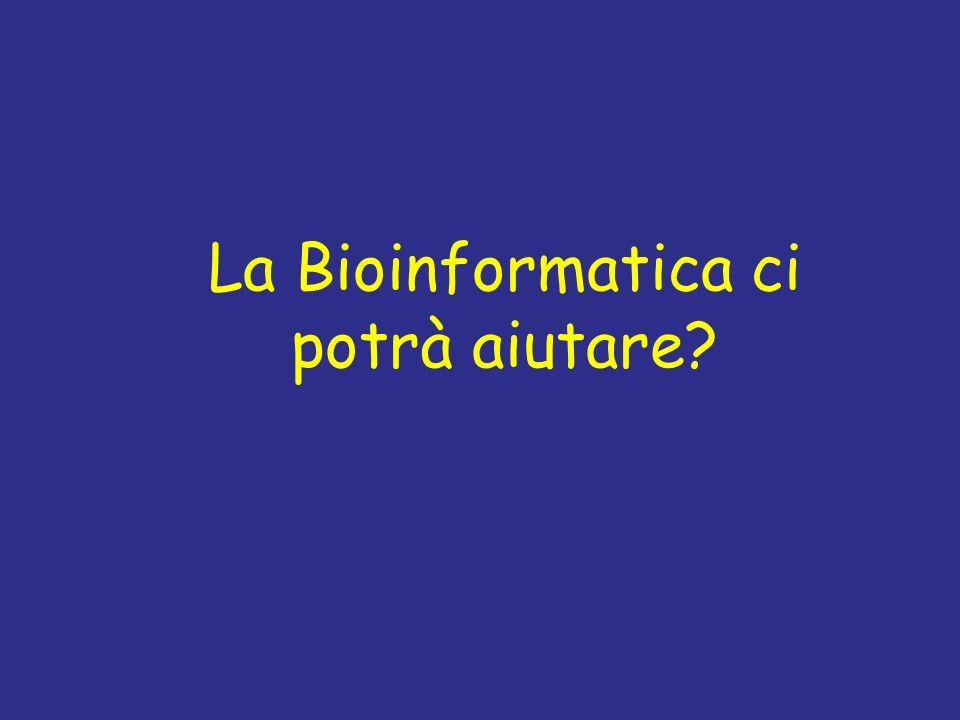 La Bioinformatica ci potrà aiutare?