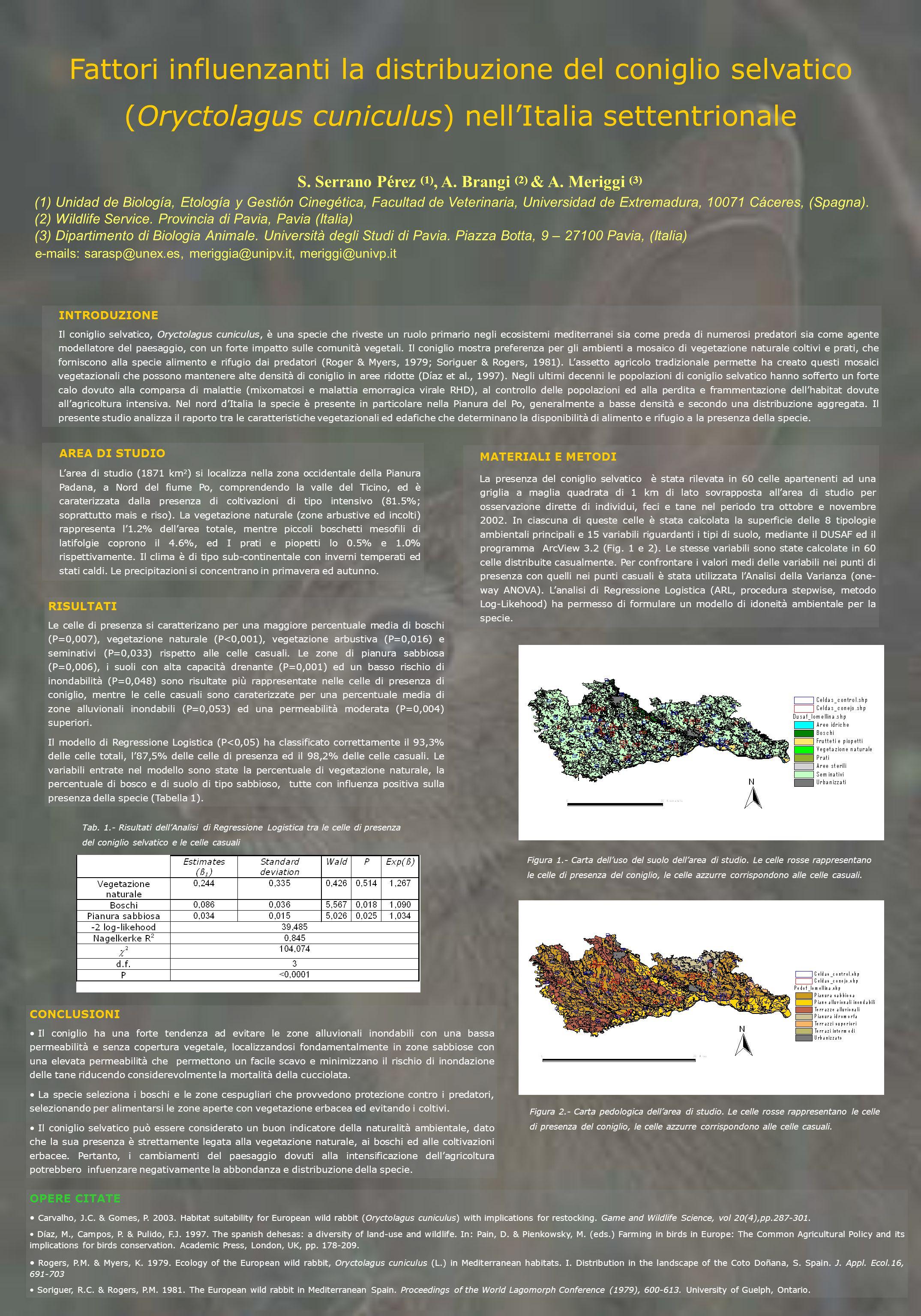 Fattori influenzanti la distribuzione del coniglio selvatico (Oryctolagus cuniculus) nellItalia settentrionale S. Serrano Pérez (1), A. Brangi (2) & A