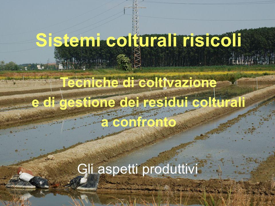 Gli aspetti produttivi Sistemi colturali risicoli Tecniche di coltivazione e di gestione dei residui colturali a confronto