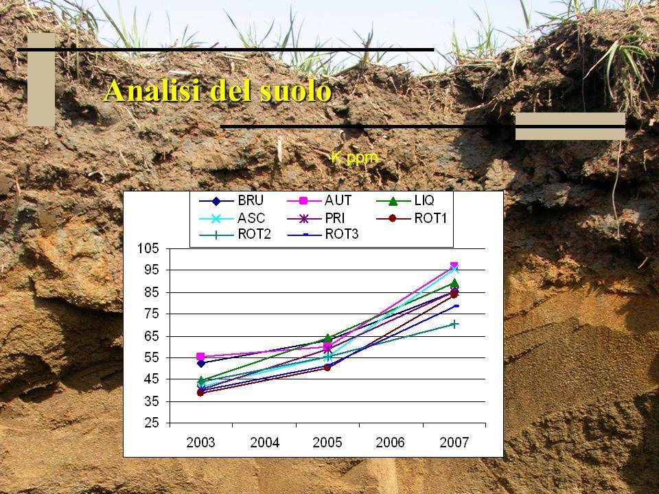 Analisi del suolo K ppm