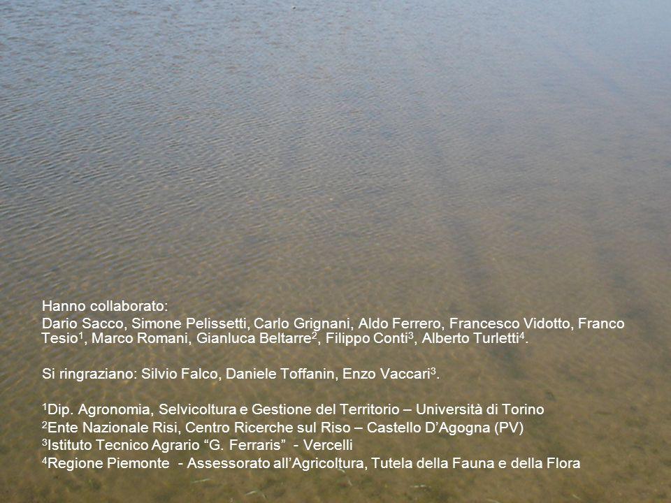 Hanno collaborato: Dario Sacco, Simone Pelissetti, Carlo Grignani, Aldo Ferrero, Francesco Vidotto, Franco Tesio 1, Marco Romani, Gianluca Beltarre 2, Filippo Conti 3, Alberto Turletti 4.
