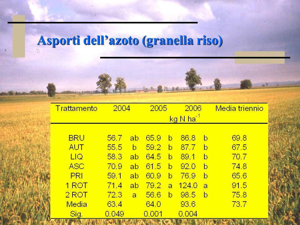 Asporti dellazoto (granella riso)