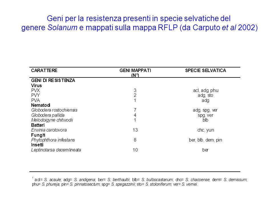 CARATTEREGENI MAPPATI (N°) SPECIE SELVATICA GENI DI RESISTENZA Virus PVX3acl, adg,phu PVY2adg, sto PVA1adg Nematodi Globodera rostochiensis7adg, spg,