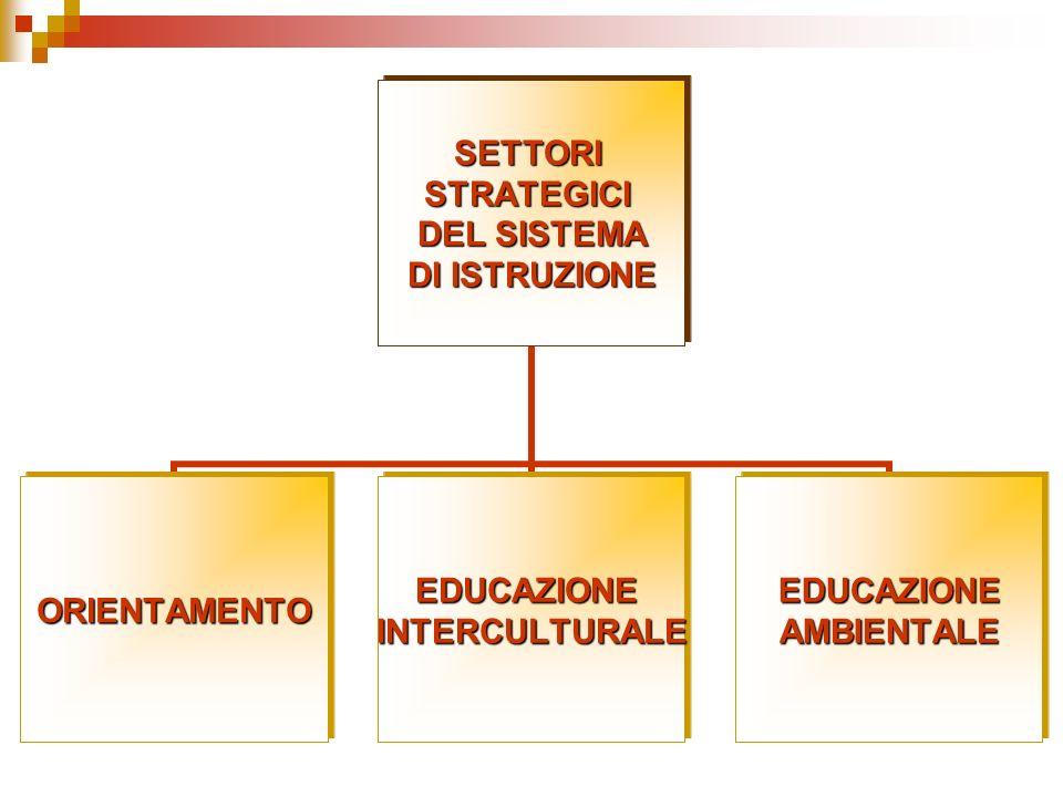 SETTORISTRATEGICI DEL SISTEMA DI ISTRUZIONE ORIENTAMENTOEDUCAZIONEINTERCULTURALEEDUCAZIONEAMBIENTALE