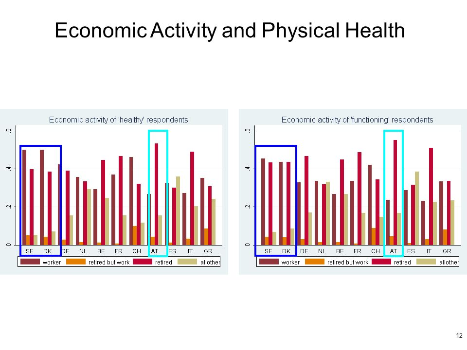 12 Economic Activity and Physical Health