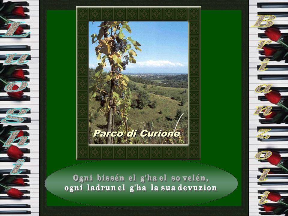 Cernusco Lombardone
