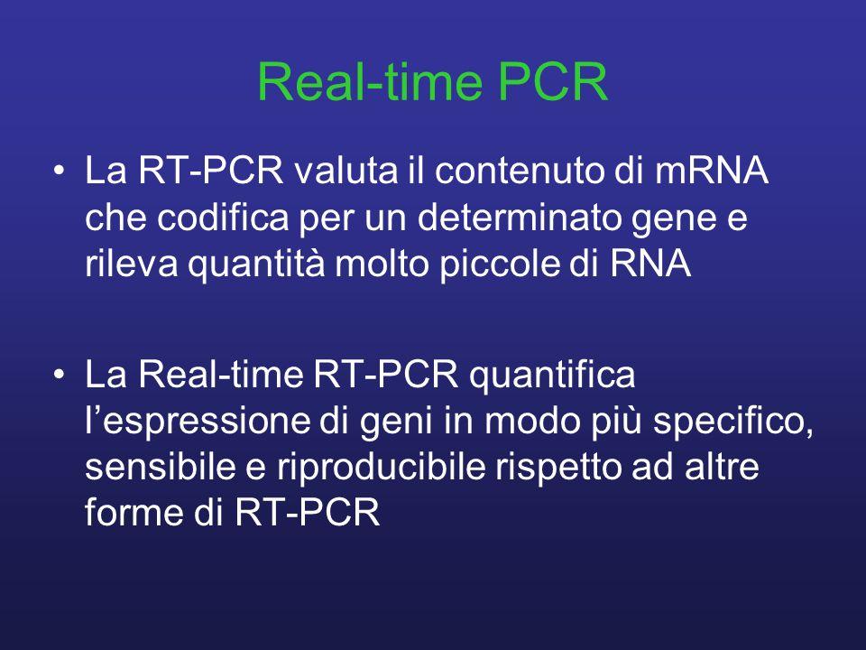 Real-time PCR La RT-PCR valuta il contenuto di mRNA che codifica per un determinato gene e rileva quantità molto piccole di RNA La Real-time RT-PCR qu