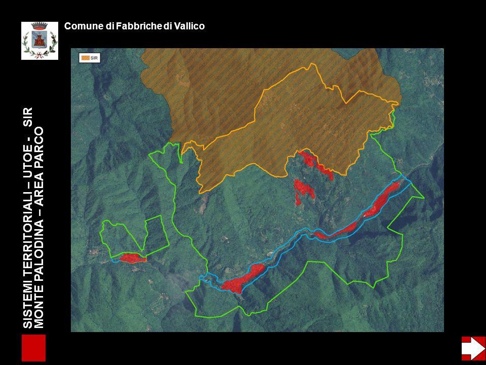SISTEMI TERRITORIALI – UTOE - SIR MONTE PALODINA – AREA PARCO - EMERGENZE GEOLOGICHE Comune di Fabbriche di Vallico