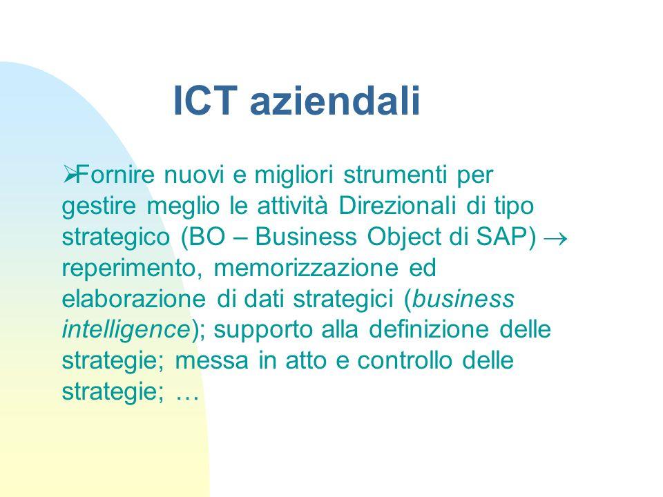 Fornire nuovi e migliori strumenti per gestire meglio le attività Direzionali di tipo strategico (BO – Business Object di SAP) reperimento, memorizzaz