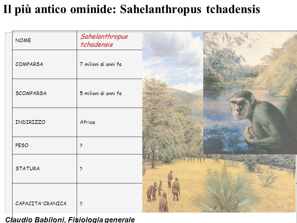 Claudio Babiloni, Fisiologia generale Il più antico antenato degli uomini: lAustralopithecus (Lucy) NOME Australopithecus afarensis COMPARSA4,1 milioni di anni fa SCOMPARSA3 milioni di anni fa INDIRIZZOAfrica PESO30/45 Kg STATURA1/1.5 m CAPACITA CRANICA 380/550 cc (34.4% del dellHomo sapiens, sapiens)