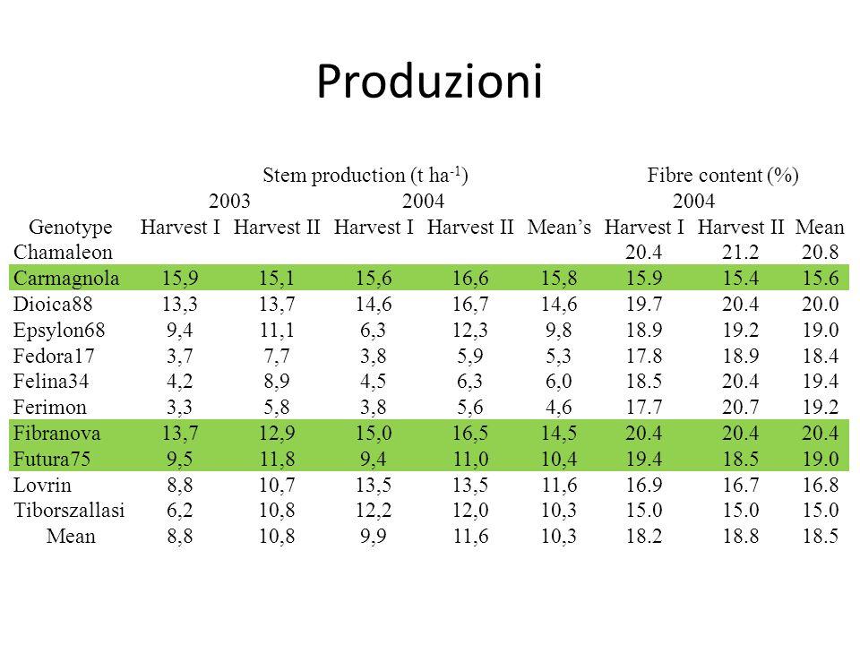 Produzioni Stem production (t ha -1 )Fibre content (%) 20032004 GenotypeHarvest IHarvest IIHarvest IHarvest II Means Harvest IHarvest IIMean Chamaleon