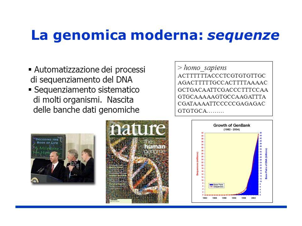 La genomica moderna: sequenze > homo_sapiens ACTTTTTTACCCTCGTGTGTTGC AGACTTTTTGCCACTTTTAAAAC GCTGACAATTCGACCCTTTCCAA GTGCAAAAAGTGCCAAGATTTA CGATAAAATT