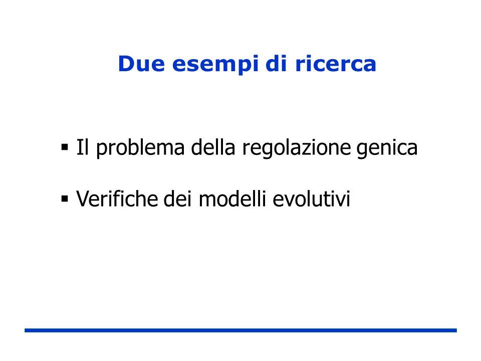 Due esempi di ricerca Il problema della regolazione genica Verifiche dei modelli evolutivi