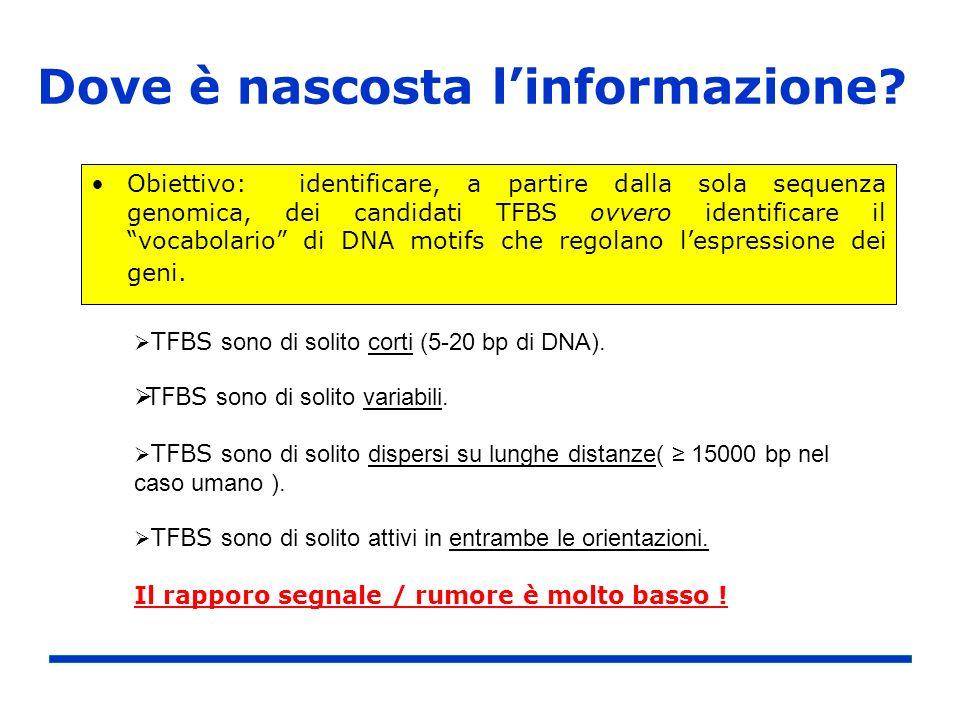 Dove è nascosta linformazione? Obiettivo: identificare, a partire dalla sola sequenza genomica, dei candidati TFBS ovvero identificare il vocabolario